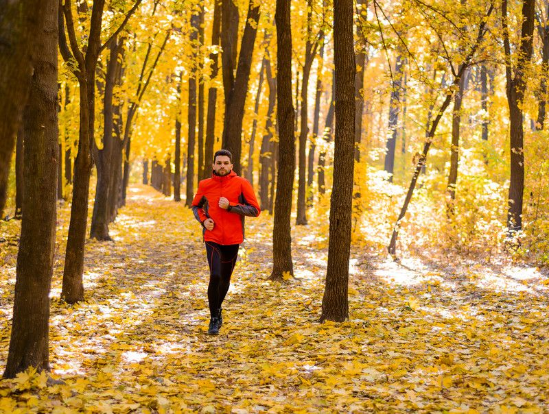 a9edea019ad Runner s World 2016 Fall Trail Shoe Guide